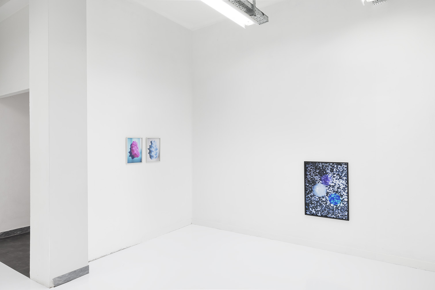 Pauline Batista, Is Your System Optimized, exhibition view @GALLLERIAPIU 2019