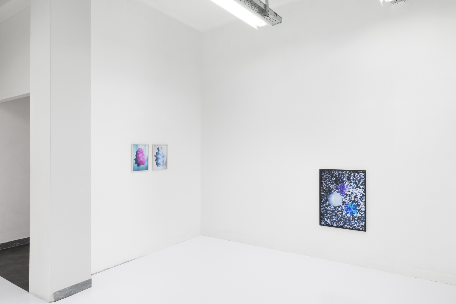 Pauline Batista, Is Your System Optimized, exhibition view @GALLLERIAPIU 2019_-